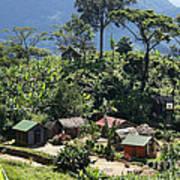 village in eastern Madagascar Art Print