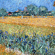 Field With Flowers Near Arles Art Print