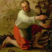Vine Grower, 1628 Oil On Canvas Art Print