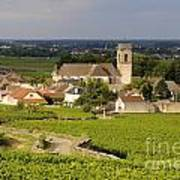Vineyard And Village Of Pommard. Cote D'or. Route Des Grands Crus. Burgundy. France. Europe Art Print by Bernard Jaubert