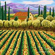 Vineyard With Olives Tuscany Art Print