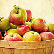 Vintage Apple Basket Art Print