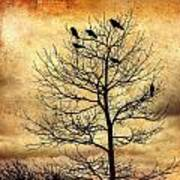 Vintage Blackbirds On A Winter Tree Art Print