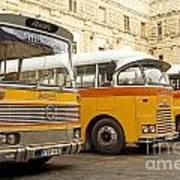 Vintage British Buses In Valetta Malta Art Print