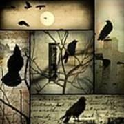 Vintage Crow Art Collage Art Print