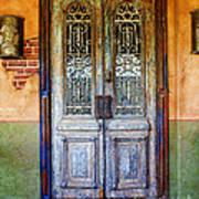 vintage door in Hico TX Art Print by Elena Nosyreva