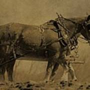 Vintage Horse Plow Art Print