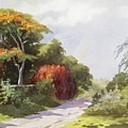 Vintage Manoa Valley Art Print