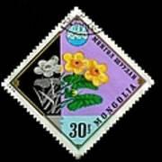 Medicinal Plants - Vintage Mongolia Stamp Art Print