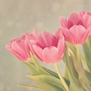 Vintage Pink Tulips Art Print by Kim Hojnacki