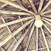 Vintage Reed Roof Art Print