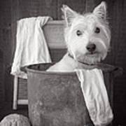 Vintage Wash Day Art Print