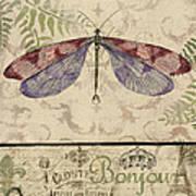 Vintage Wings-paris-f Art Print