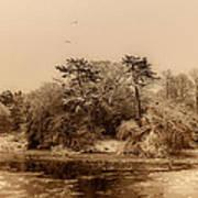 Vintage Winter Art Print