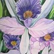 Violet Adventures Art Print