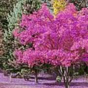Violet Autumn Art Print