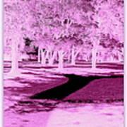 Violet Illusion Art Print