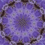 Violet Garden Art Print