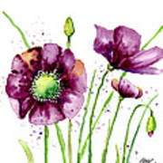 Violet Poppies Art Print by Annie Troe