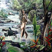 Virgin Forest Art Print