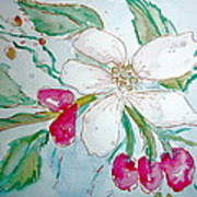 Virginia Dogwood Art Print by Brenda Ruark