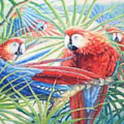 Voices Of The Amazon Art Print