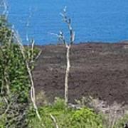 Volcano Rocks - Ile De La Reunion - Reunion Island Art Print by Francoise Leandre