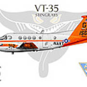 Vt-35 Stingrays Art Print