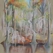 Waccamaw River Impressions Art Print