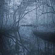 Waccasassa River Art Print