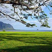 Waiahole Oahu Hawaii Art Print
