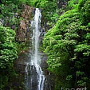 Waikani Falls At Wailua Maui Hawaii Art Print