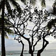 Waikiki Beach Hawaii Usa Art Print