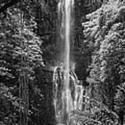 Wailua Falls 2 Art Print