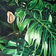 Waipeo Green Art Print