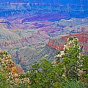 Walhala Overlook On North Rim Of Grand Canyon-arizona  Art Print