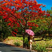 Walking Along The Road. Mauritius Art Print