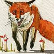 Walking Red Fox Art Print