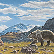 Walking The Ridge - Grizzly Art Print