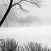 Walking Through A Winter Wonderland Art Print