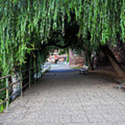 Walkway By The River Art Print