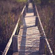 Walkway Through The Reeds Appalachian Trail Art Print by Edward Fielding