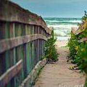 Walkway To The Beach Art Print