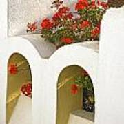 Wall With Red Flowers Art Print