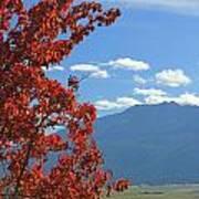 Dn5930-wallowa Valley In Fall Art Print