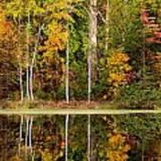 Walnut Creek Lake Autumn Reflection Art Print