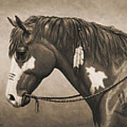 War Horse Aged Photo Fx Art Print