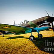 Warbird Curtiss P-40 E Art Print