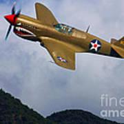 Warhawk Curtiss P-40  Art Print