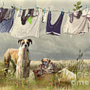 Wash Day Art Print by Trudi Simmonds